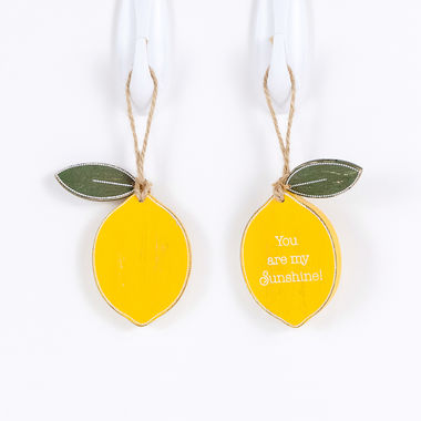 Click here to see Adams&Co 45059 45059 2.25x3x.25 rvsbl wd tag w/charm (LEMON) yl/wh